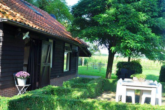 Dorpswoning Het Knusse - Villapparte -romantisch vakantiehuis voor 4 personen - Noord Brabant - buiten terras