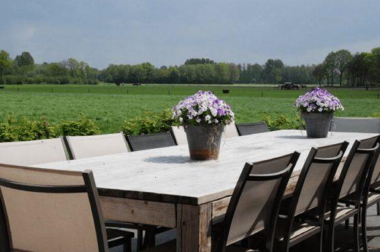 Dorpswoning Het Uitzicht - Villapparte - luxe vakantiehuis voor 14 personen - groepsaccommodatie - Noord Brabant - terrastafel tuin