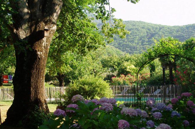 La Cerisaie-Villapparte-Unieke chambres d'hôtes met zwembad-Gîtes en studio-Languedoc Roussillon-Riols- tuin met hortensiastruiken