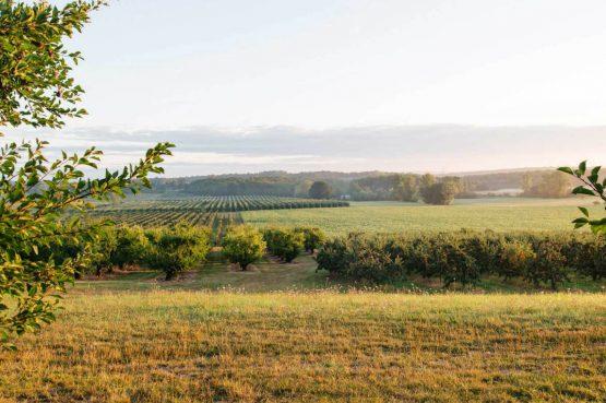 Villapparte_Côte Verger_authentieke Chambres d'Hôtes_Dordogne_uitzicht