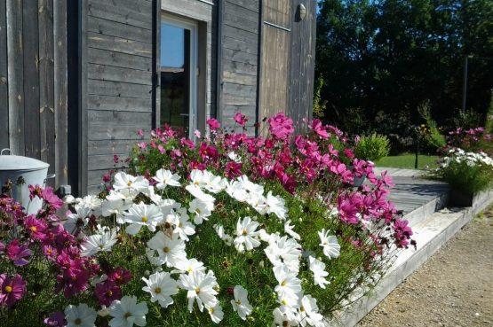Vakantiehuis Les Terrasses_Villapparte_luxe vakantiehuis voor 8 personen_Lot et Garonne_verwarmd zwembad_bloemenzee rondom vakantiehuis