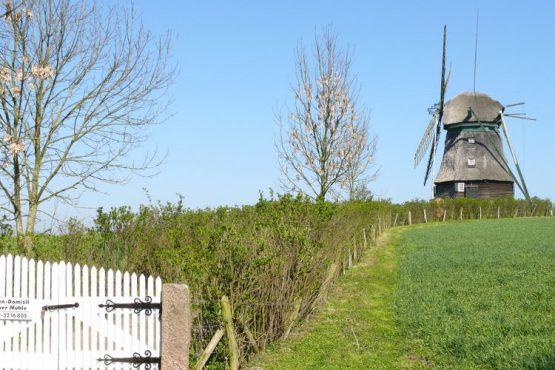 Villapparte-Belvilla-Vakantiehuis Mühle mit Charme in Wangels-luxe vakantiehuis voor 6 personen-Duitsland-sfeer