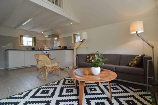 Villapparte-Belvilla-Vakantiehuis aan de Dorpsgracht in Giethoorn-knus vakantiehuis voor 2 personen-woonkamer met open keuken