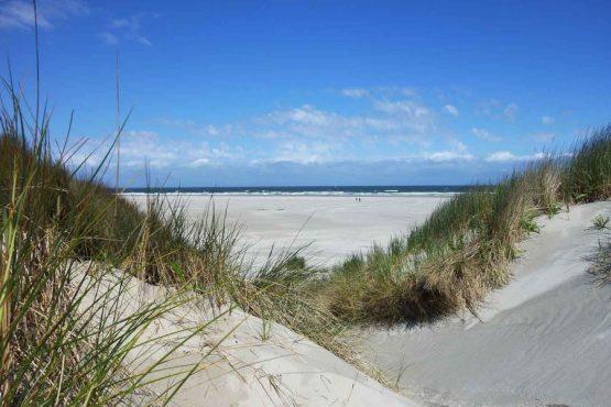 Villapparte-Natuurhuisje 35805-Vakantiehuis Wanderlust in Schoorl-4 personen-Noord-Holland-duinen
