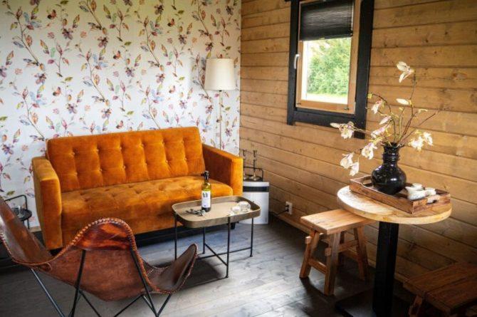 Villapparte-Natuurhuisje 50879-Vakantiehuis Weids Uitzicht in Medemblik-3 personen-Noord-Holland-moderne woonkamer