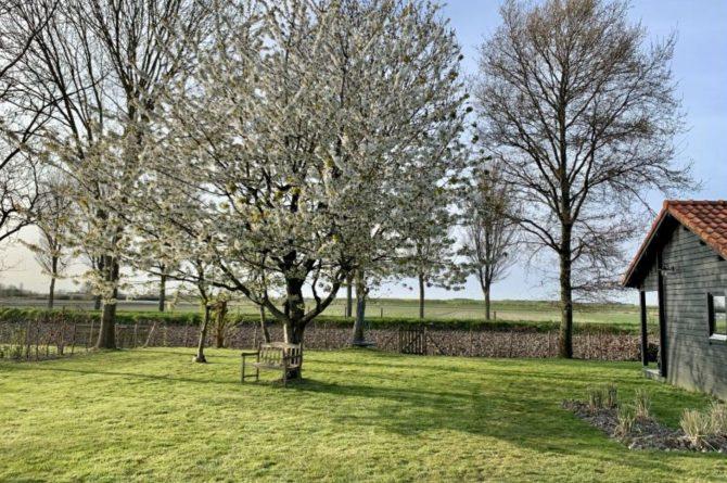 Villapparte-Natuurhuisje 50879-Vakantiehuis Weids Uitzicht in Medemblik-3 personen-Noord-Holland-uitzicht