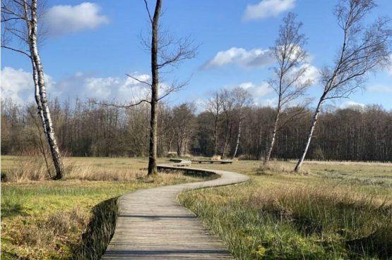 Villapparte-Scandinavische Chalet in Epe-Veluwe-luxe vakantiechalet voor 6 personen-Gelderland-omgeving