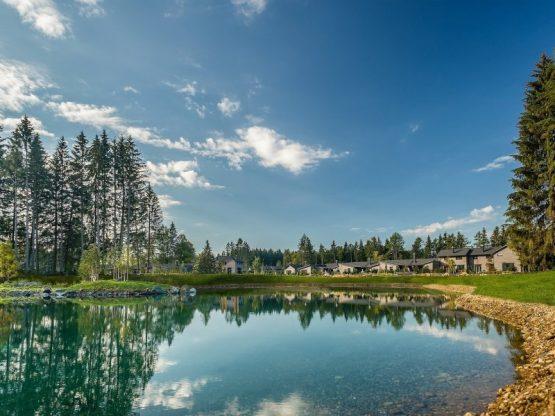 Villapparte-Center Parcs Allgau-Zuid-Duitsland-luxe vakantiehuis met sauna-8 personen-park
