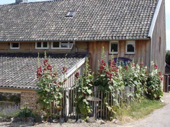 Villapparte-Natuurhuisje 31983-Vakantiehuis de Vakwerkhoeve-8 personen-Epen