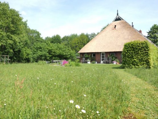 Villapparte-Vakantiehuis Het Drents Friese Woud-Makkinga-Friesland-4 personen-hoofdfoto