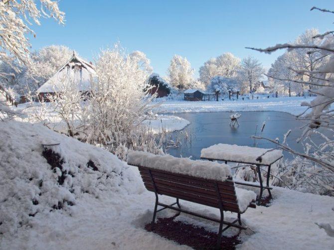 Villapparte-Vakantiehuis Het Drents Friese Woud-Makkinga-Friesland-4 personen-winter plaatje
