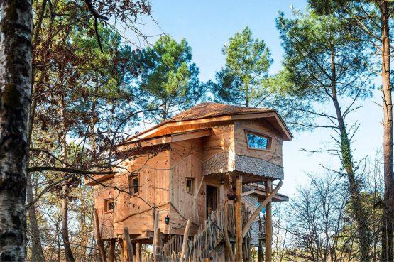 Villapparte-Center Parcs Bois aux Daims-Morton-Vienne-Frankrijk-Boomhuis voor 4 personen