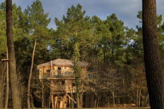 Villapparte-Center Parcs Bois aux Daims-Morton-Vienne-Frankrijk-Boomhuis voor 4 personen-hoog tussen de bomen
