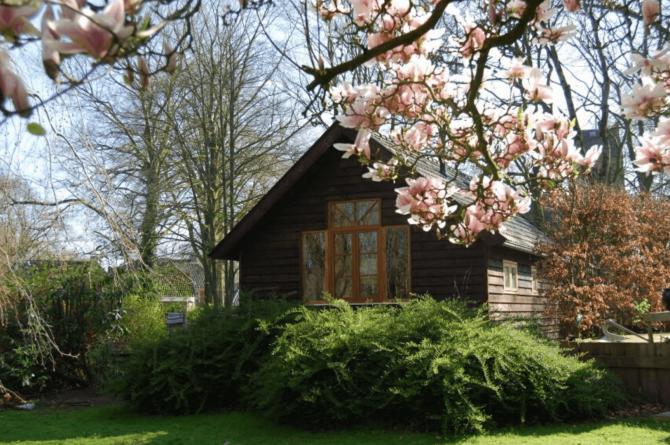 Villapparte-Natuurhuisje-Guesthouse Oldeberkoop-schattig guesthouse voor 2 personen-Oldeberkoop-Friesland