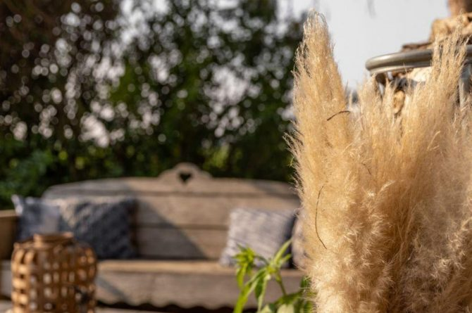 Villapparte-Vakantieboerderij Baarland-Zeeland-Baarland-Natuurhuisje-2 personen-sfeer tuin