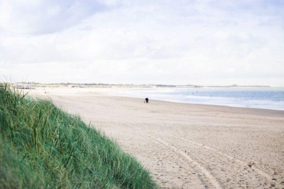 Villapparte-Zeeuws Duinhuis-luxe vakantiehuis voor 5 personen-Breskens-Zeeuws Vlaanderen-op loopafstand van het strand