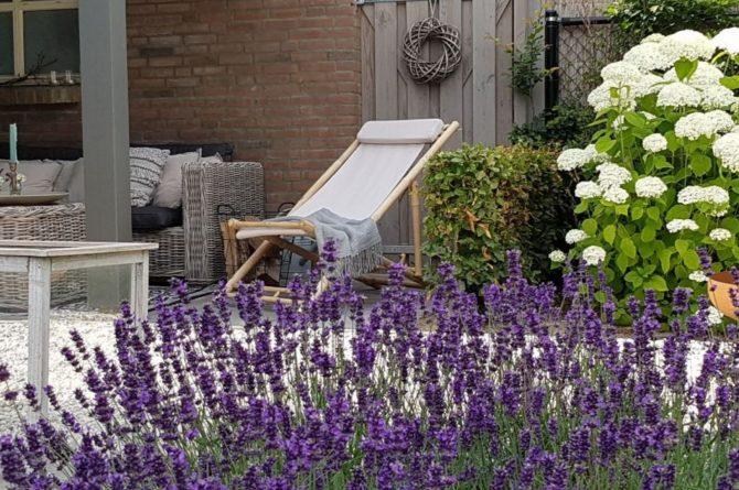 Villapparte-Natuurhuisje-Vakantiehuis Hof van Strijbeek-voor 4 personen-landelijk gelegen in Noord-Brabant-zonnige tuin