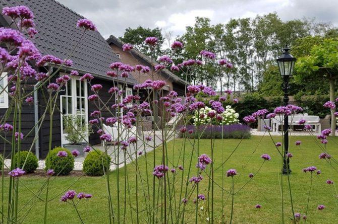 Villapparte-Natuurhuisje-Vakantiehuis Hof van Strijbeek-voor 4 personen-landelijk gelegen in Noord-Brabant-zonnige tuin met zitjes