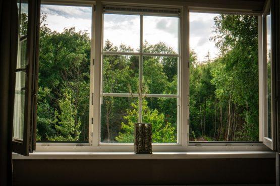 Villapparte-Natuurhuisje 54333-Vakantiehuis De Zeekraal-6 personen-Hulst-Zeeuws Vlaanderen-uitzicht