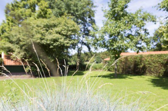 Villapparte-Onthaasten in de Achterhoek-Vakantiehuis de Koolmees-luxe vakantiehuis voor 5 personen-prachtige tuin-Gelderland