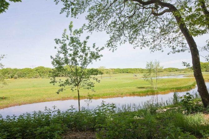 Villapparte-Special Villas-Vakantiehuis Betonnen Boshuis-luxe vakantiehuis voor 4 personen-Oosterhout-Noord-Brabant-golfbaan