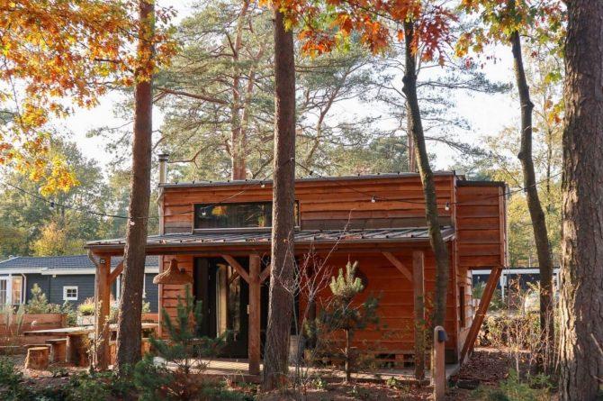 Villapparte-Droomparken-Tiny House Plus De Zanding-gezellig Tiny House voor 4 personen-Otterlo-Veluwe-in het bos