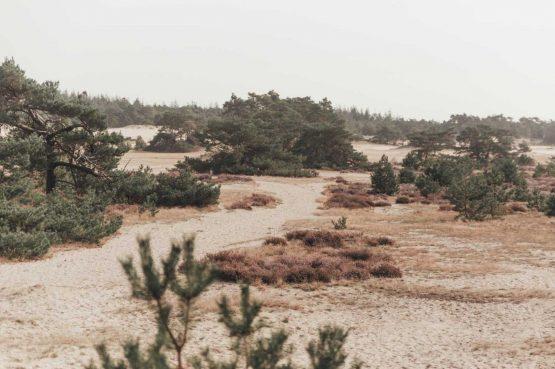 Villapparte-Noyr Tiny House-Veluwe-Nunspeet-Gelderland-2 personen-zandvlakte