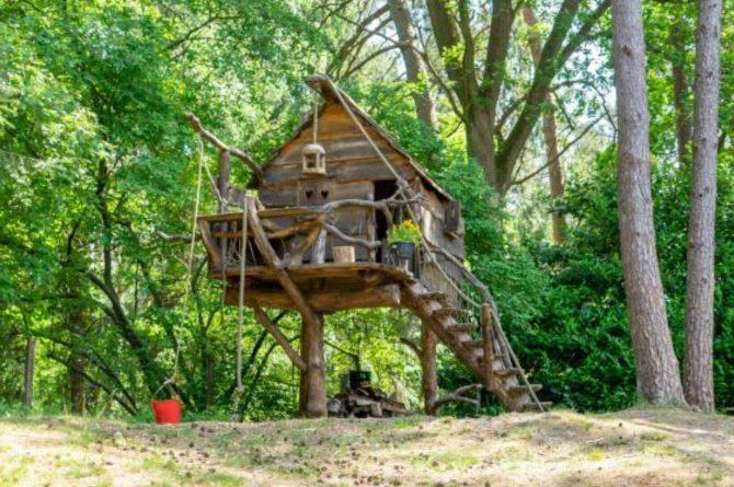 Villapparte-Natuurhuisje 35841-Vakantiehuis Midden in het Bos-romantisch vakantiehuis voor 6 personen-Lage Vuursche-Utrecht-boomhut