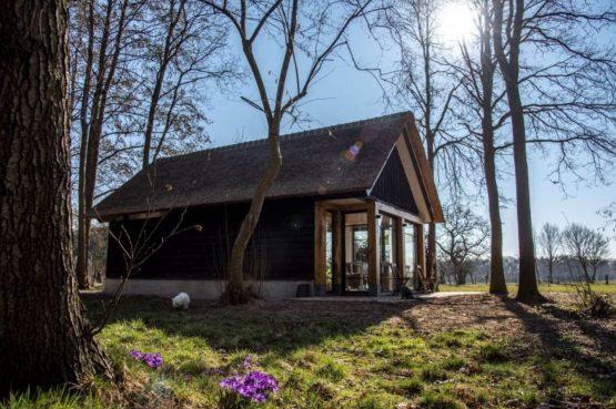 Villapparte-Natuurhuisje-Vakantiehuis Terschuur-romantisch vakantiehuis voor 3 personen-Terschuur-Gelderland-herfst plaatje