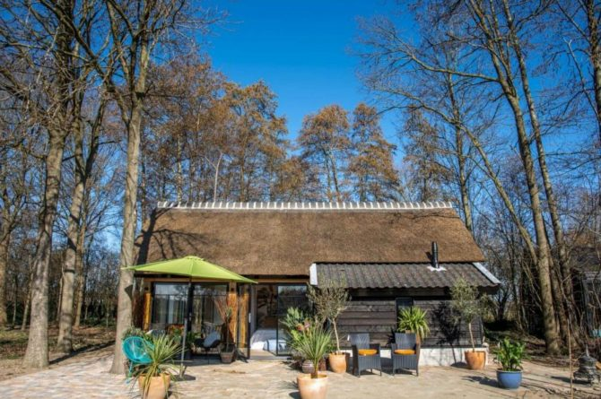 Villapparte-Natuurhuisje-Vakantiehuis Terschuur-romantisch vakantiehuis voor 3 personen-Terschuur-Gelderland-tegen de bosrand