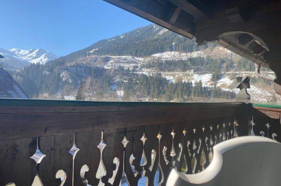 Villapparte-Villa Kraft-Villapparte Select-Unieke appartementen-Bad Gastein-Oostenrijk-winter