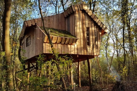 Villapparte-Ardoer-Boomhut XXL-romantische boomhut voor 4 personen-Camping Reeenwissel-Drenthe