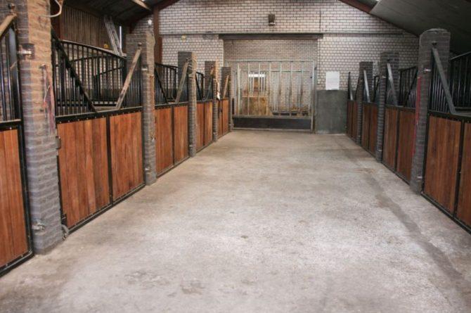 Villapparte-De Dorpswoning-De Volbloed-luxe vakantiehuis voor 12 personen-Leenderstrijp-Noord-Brabant-paardenstal