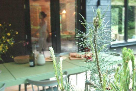 Villapparte-Natuurhuisje-Natuurhuisje Appelscha-luxe vakantiehuis voor 8 personen-Nationaal park Drents-Friese Wold-Friesland-sfeer buiten