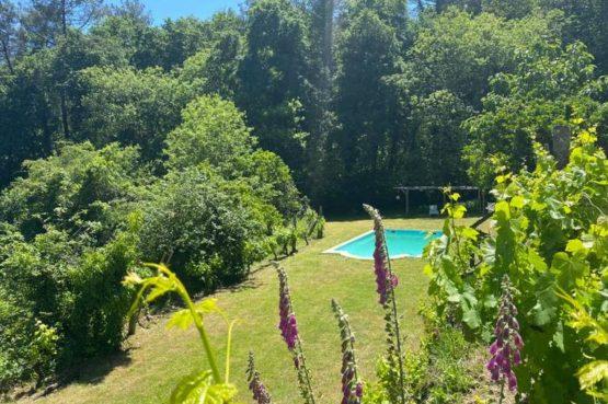 Villapparte-Natuurhuisje São Pedro do Sul-romantische vakantiehuisje voor 4 personen-Viseu-centraal Portugal-groen terrein met zwembad